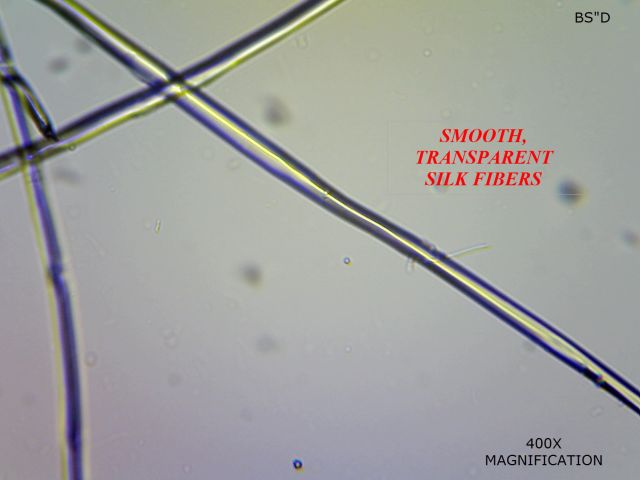 400x Microscopic View Cultivated Silk Fiber